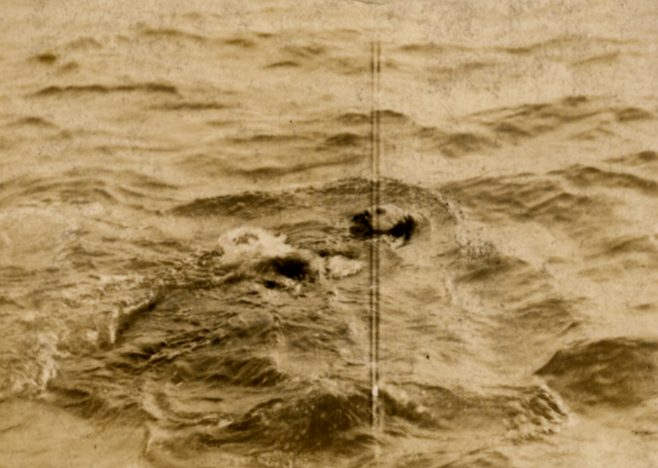 Montague Holbein swimming in mask